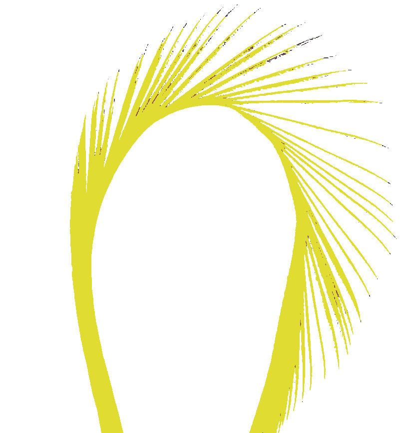 Yellow Goose Biot Feather