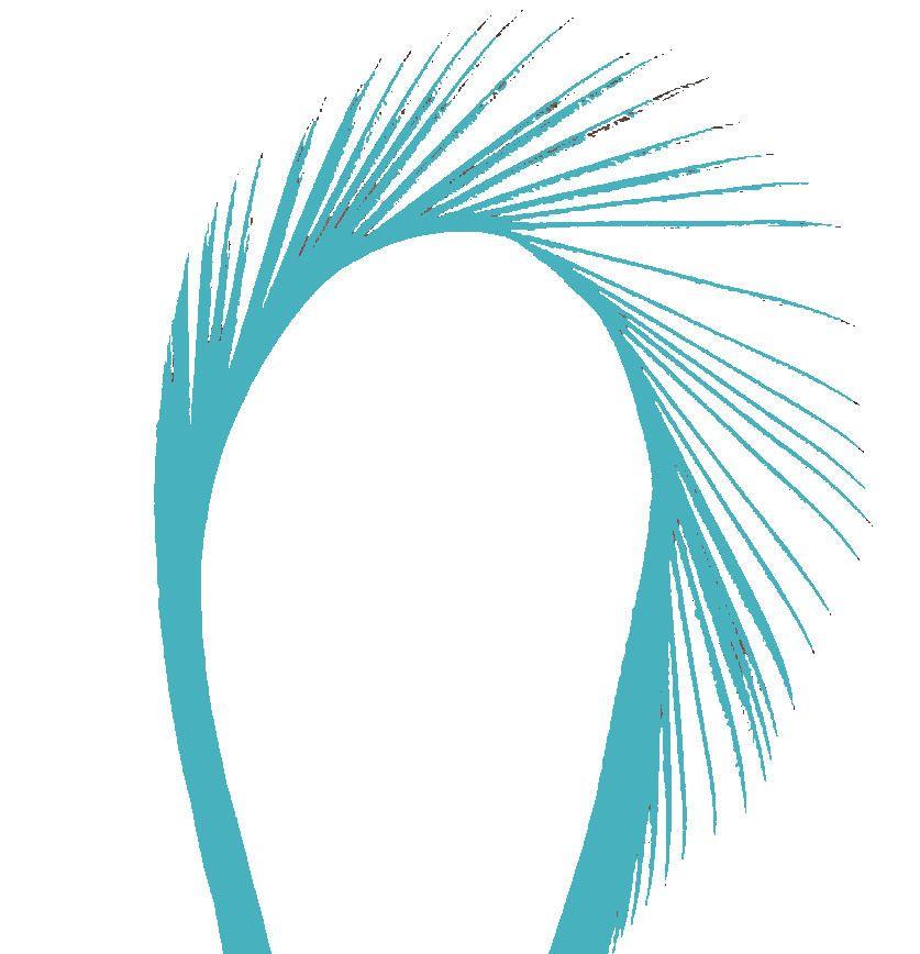 Aqua Goose Biot Feather