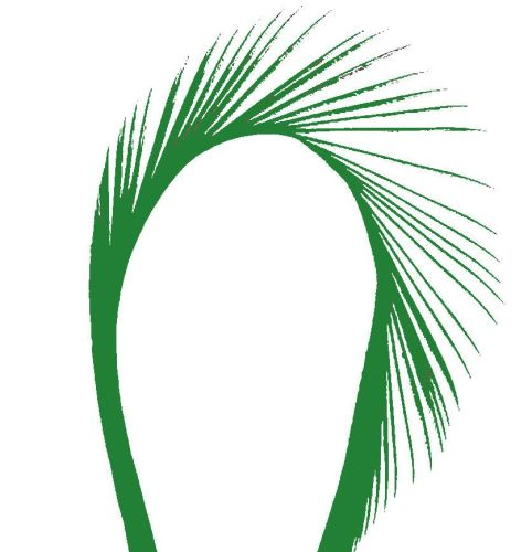Green Goose Biot Feather