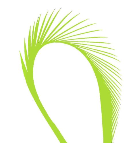 Lime Green Goose Biot Feather
