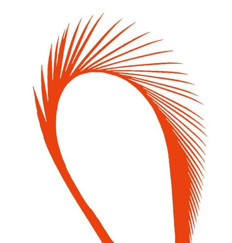 Orange Goose Biot Feather