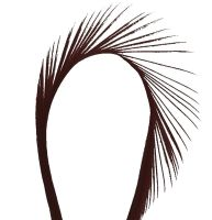 Brown Goose Biot Feather