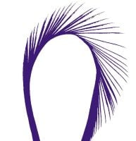 Regal Purple Goose Biot Feather