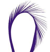 Purple Goose Biot Feather