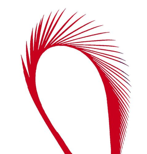 Red Goose Biot Feather