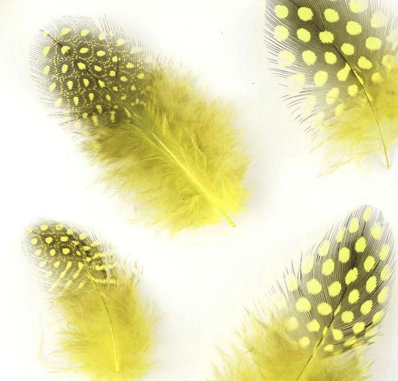 Fluorescent Yellow Guinea Fowl Feathers (Spotty)