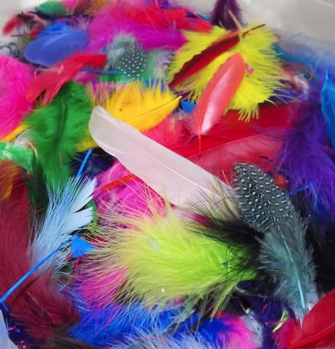 Crafting Feathers Assorted Shades and Styles