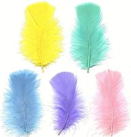 Turkey Coquille Feathers - Pastel Shades