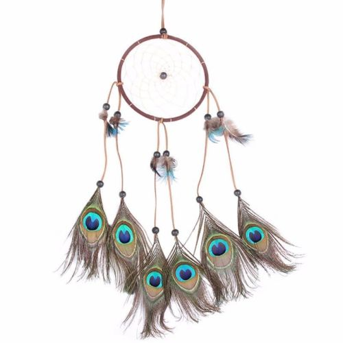 Peacock Feather Dreamcatcher