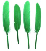 Emerald Green Goose Quill Feathers x 10