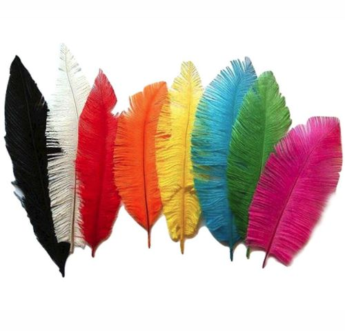 Ostrich Feather Trimmed - Assorted Shades Available
