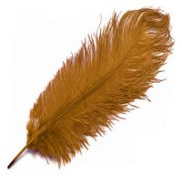 Gold Ostrich Feather