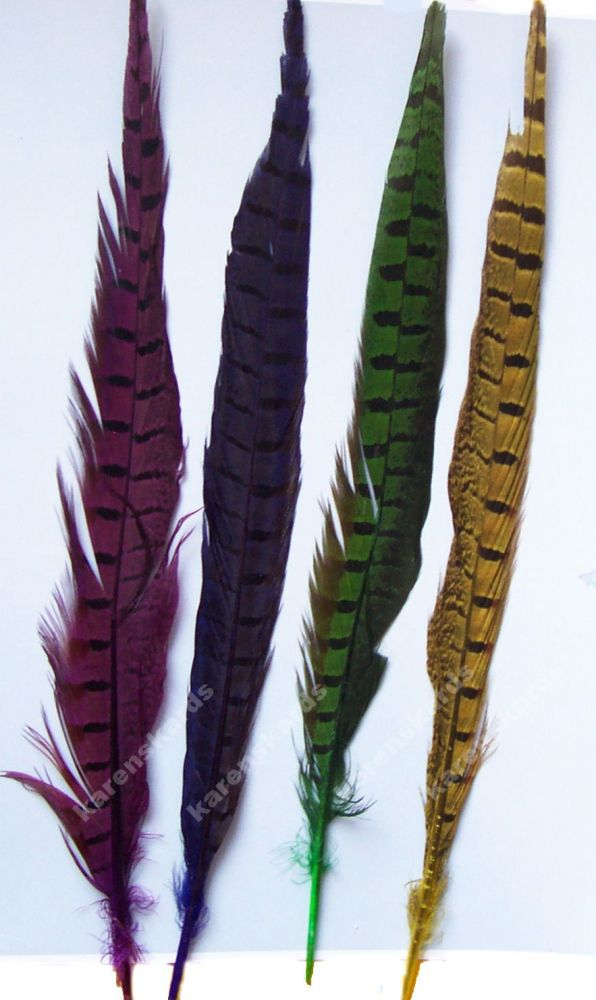 Dyed Ringneck Pheasant Tail Feather (12 inch) Seconds