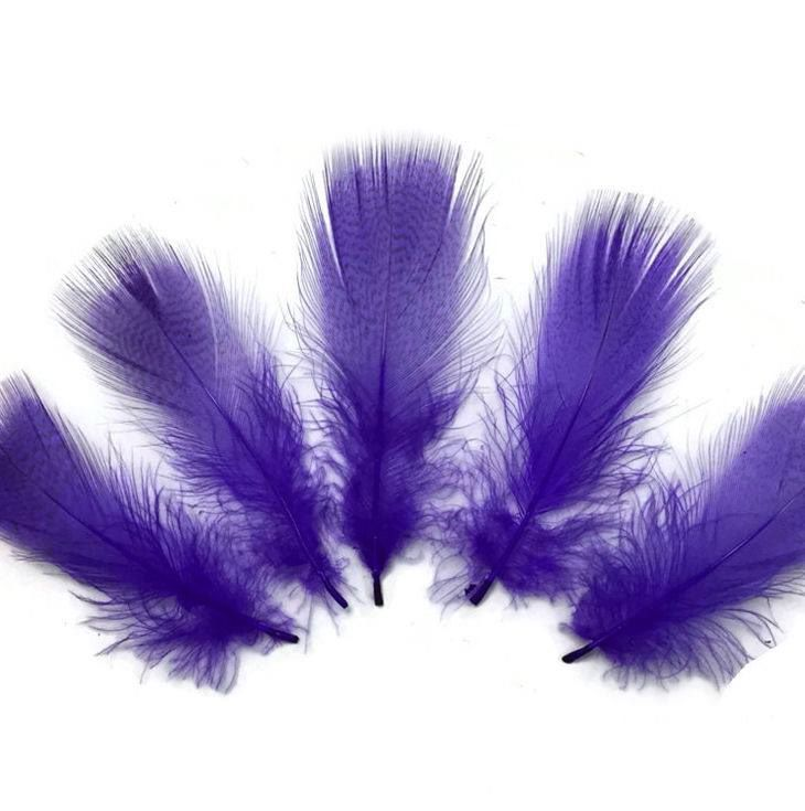 Purple Duck Speckled Flank Feathers x 10
