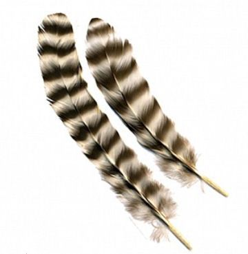 Decorative Feathers, Chinchilla Rounds Rooster Feathers x 10