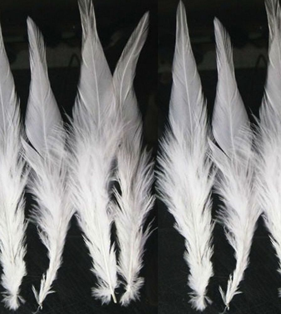 White Rooster Saddle Feathers x 10