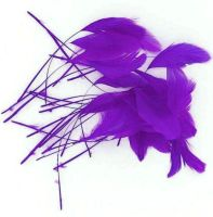 Purple Trimmed Rooster Coque Tail Feathers - Clearout