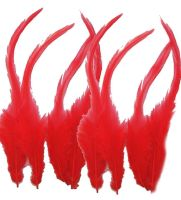 Red Rooster Saddle Feathers x 10