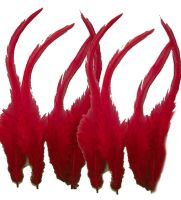 Burgundy Rooster Saddle Feathers x 10