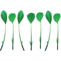 Green Stripped Coque Tail Rooster Feathers x 10