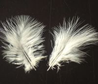 Eggshell Marabou Feathers - Small