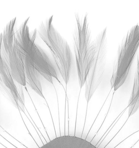Silver Rooster Feathers Hackles Stripped x 10
