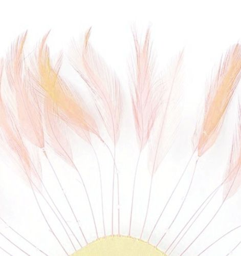 Pink Champagne Rooster Feathers Hackles Stripped x 10