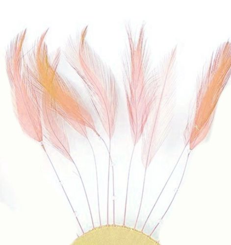Peach Rooster Feathers Hackles Stripped x 10