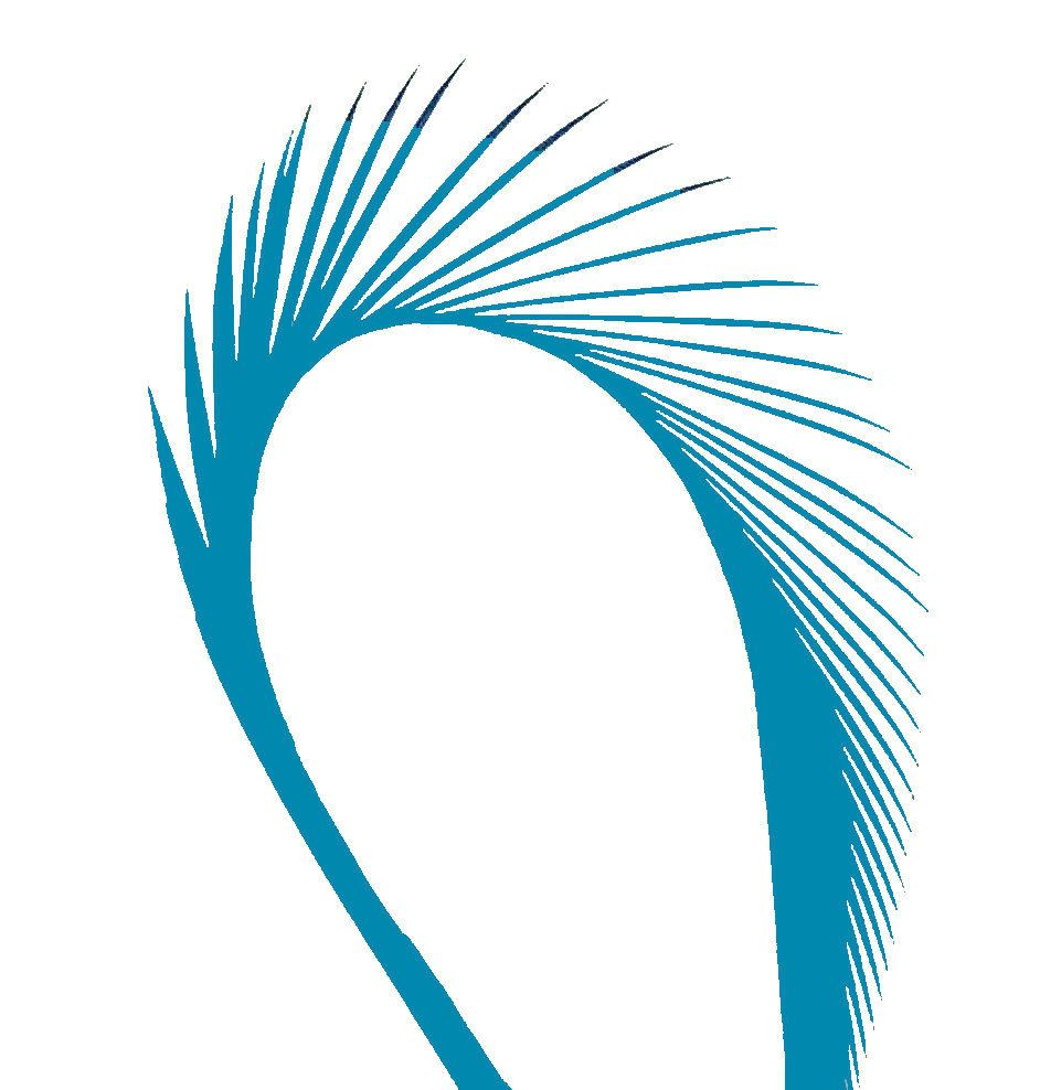 Deep Turquoise Goose Biot Feather