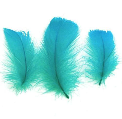 Deep Aquamarine Goose Coquille Feathers x 25