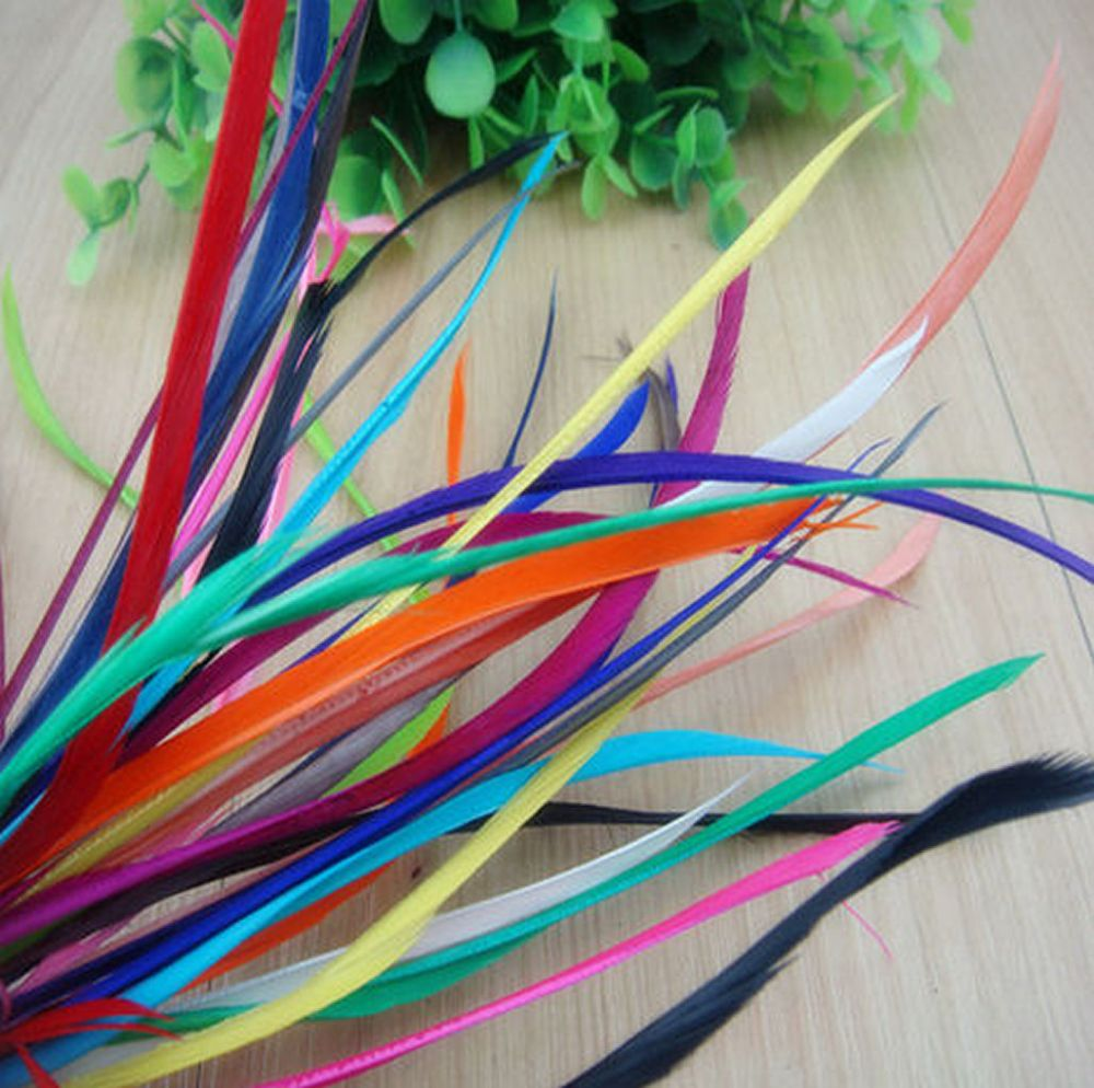 Goose Biot feathers