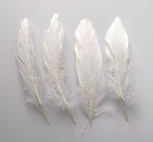 White Goose Quill Feathers with Gold Glitter