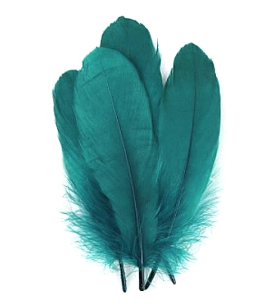 Peacock Teal Blue Parried Goose Pallette Feathers x 5