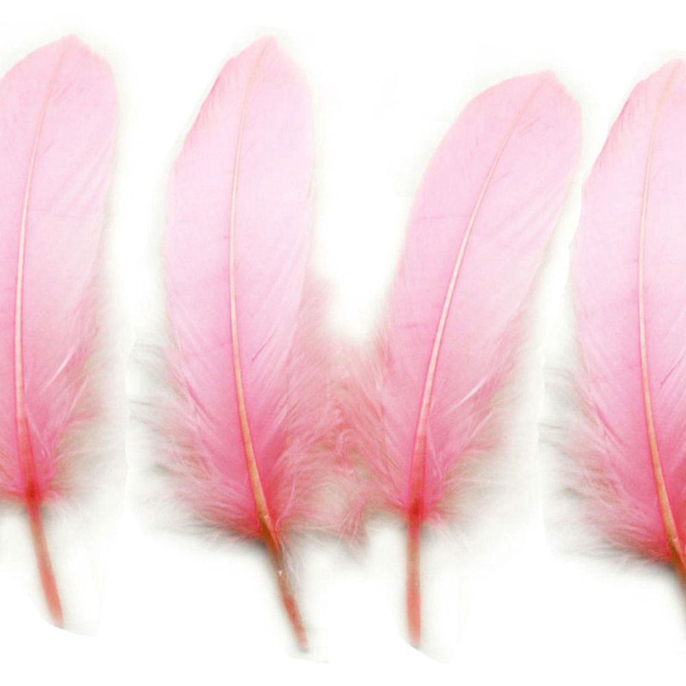 Baby Pink Goose Quill Feathers x 4