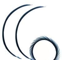 Dark Navy Blue Goose Biot Feather x 1