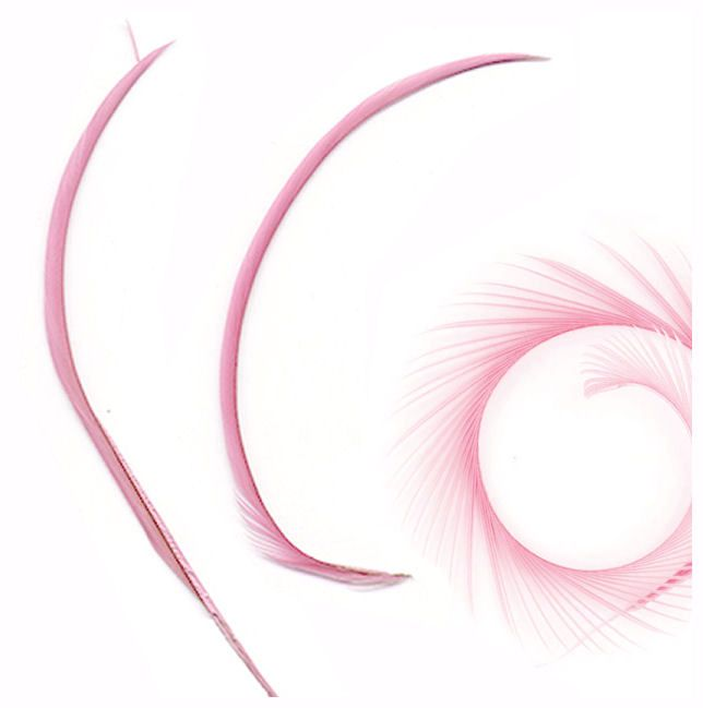 Light Pink Goose Biot Feather