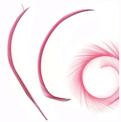 Strawberry Pink Goose Biot Feather