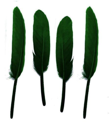 Hunter Green Goose Quill Feathers x 10