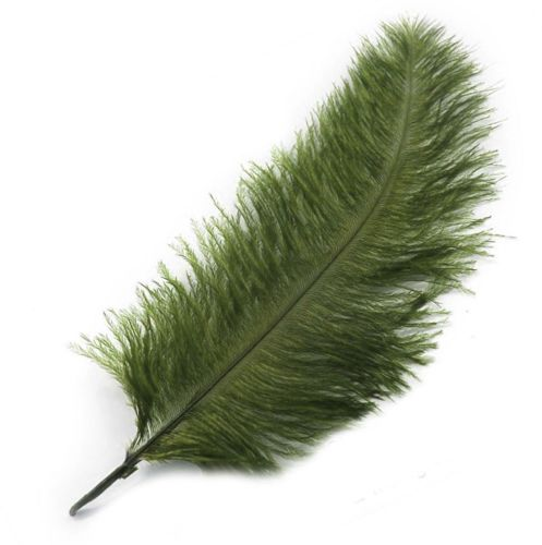 Olive Moss Green Ostrich Feather
