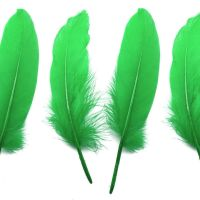 Kelly Green Goose Quill Feathers x 4