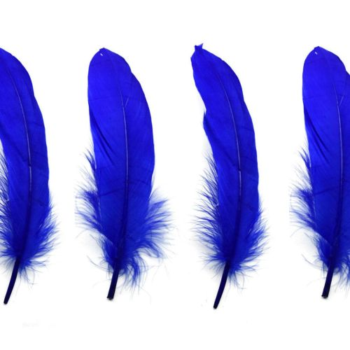 Royal Blue Goose Quill Feathers x 4