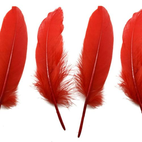 Red Goose Quill Feathers x 4