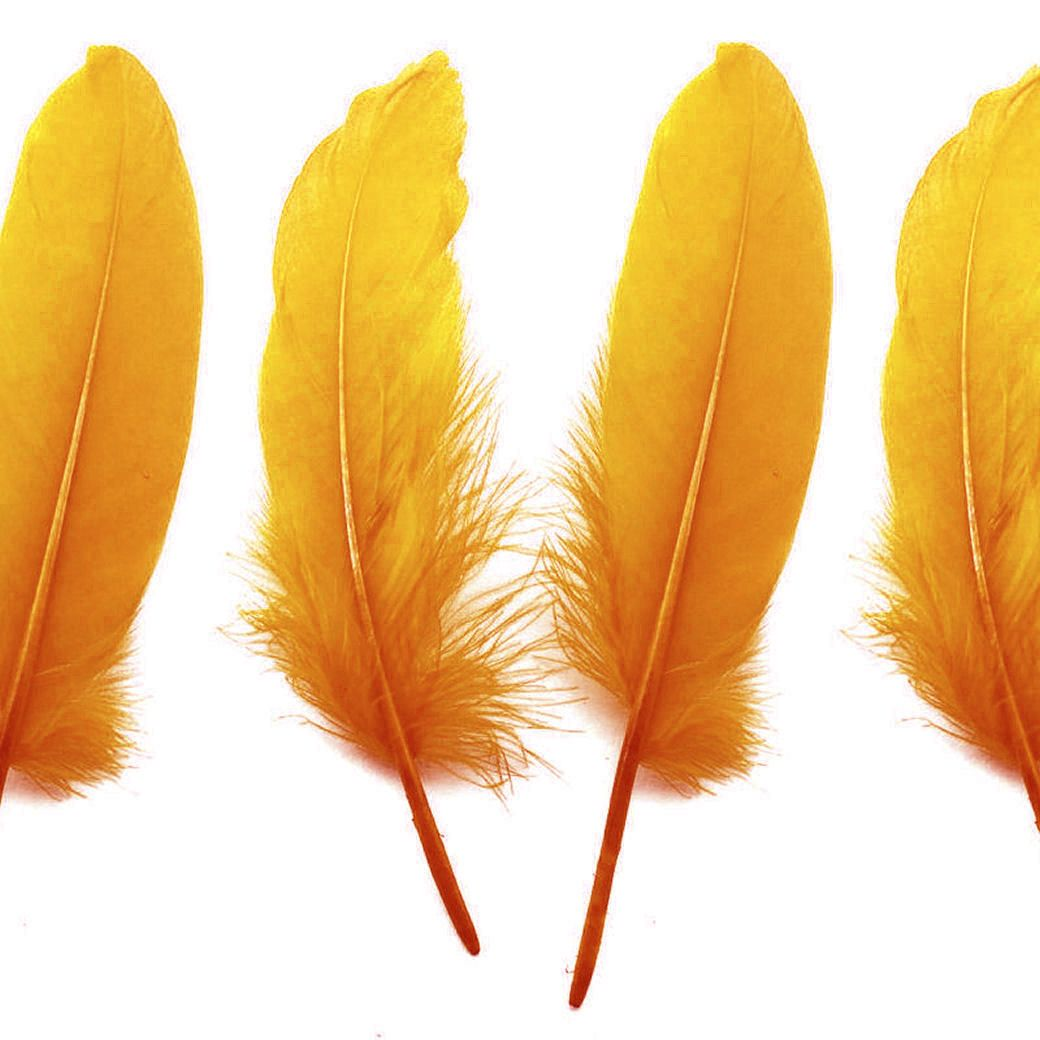 Yellow Goose Quill Feathers x 4