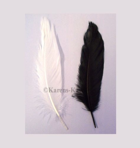 Goose Satinette Feathers in Black and White x 20