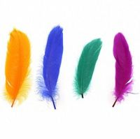 Goose Satinette Feathers in Carnival Shades x 20
