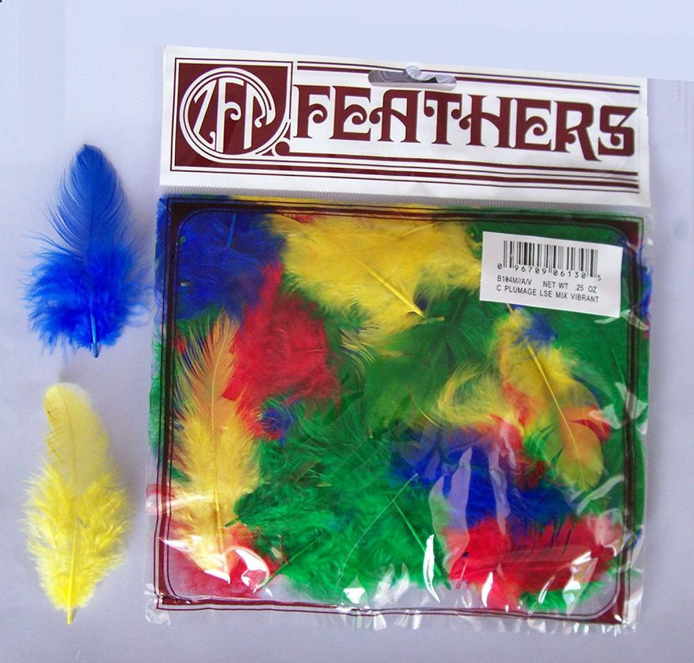 Rooster Plumage Bright Feathers