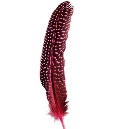 Candy Pink Guinea Fowl Wing Quill Feather