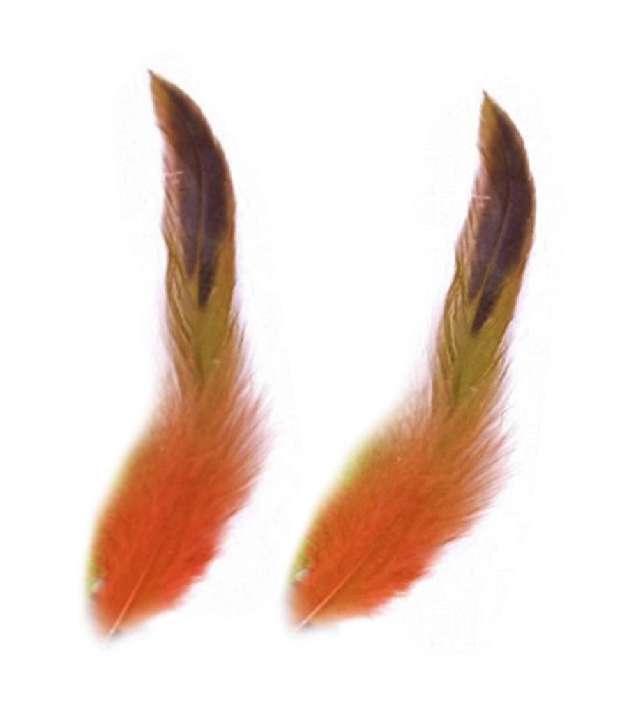 Orange Rooster Schlappen Half Bronze Feathers