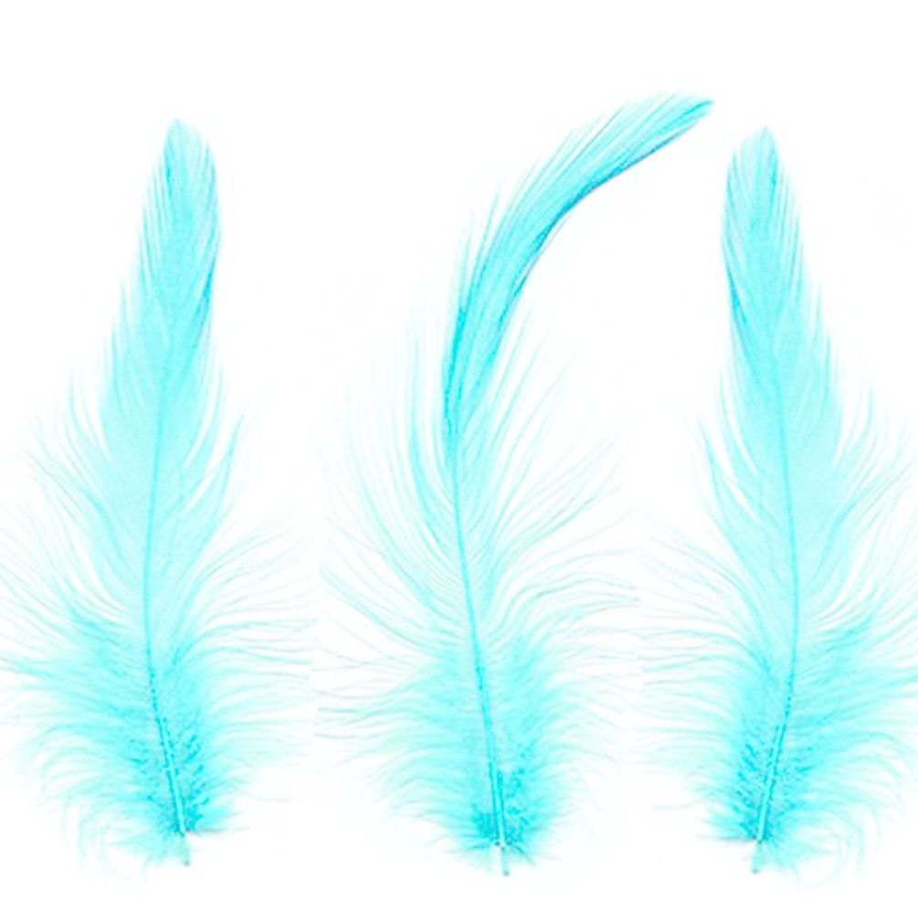 Light Turquoise Hackle Feathers x 10