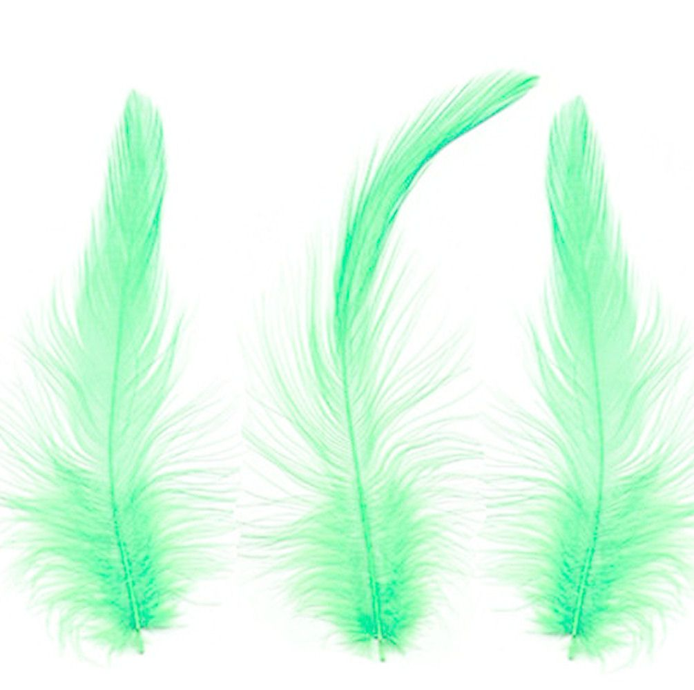 Green Hackle Feathers x 10